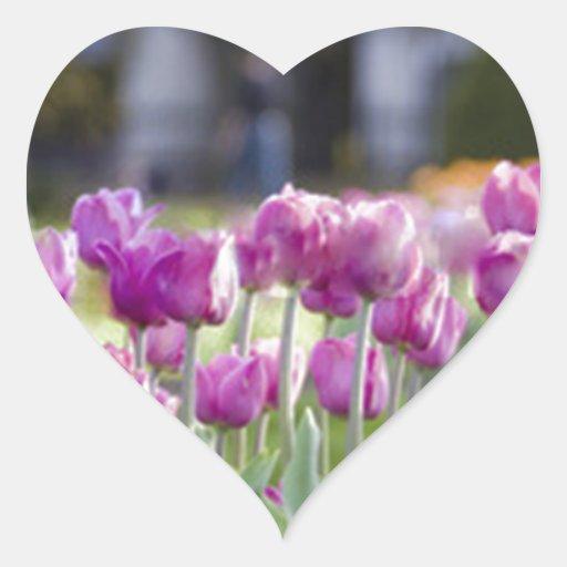 Flores rosas pegatina en forma de corazón