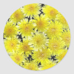 Flores salvajes amarillas etiquetas