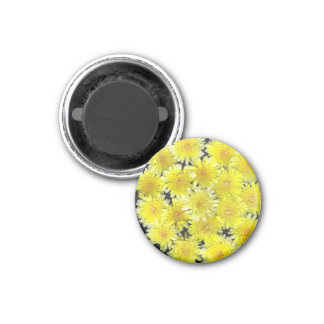 Flores salvajes amarillas imán redondo 3 cm