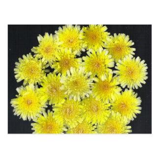 Flores salvajes amarillas postal