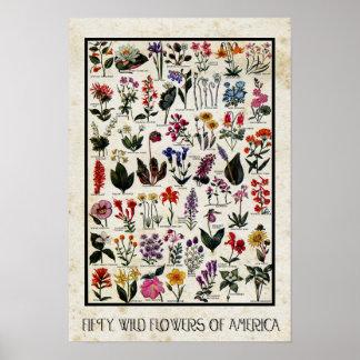 Flores salvajes botánicas de floral antiguo de póster