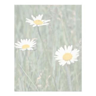 Flores salvajes de las margaritas blancas membrete personalizado