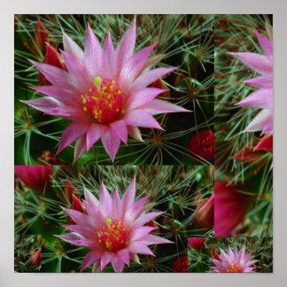 """"""" flores salvajes del CACTUS 12x12: Energía positi Impresiones"""