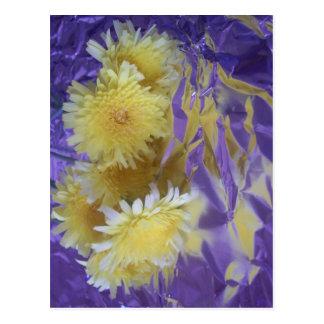 Flores salvajes del desierto amarillo postales