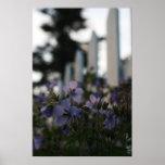 Flores salvajes del patio impresiones