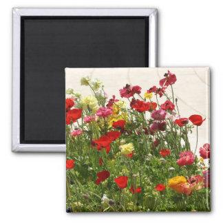 Flores salvajes en campo verde imán de frigorifico