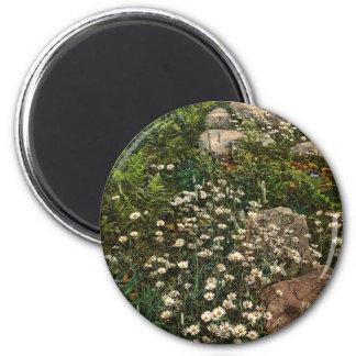 Flores salvajes Photochrom raro de la montaña de A Imán Redondo 5 Cm