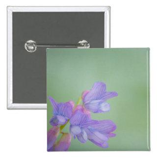 Flores salvajes púrpuras suaves con un fondo verde pin