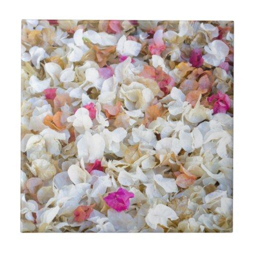Flores secadas CONFETI Azulejos