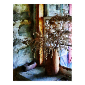 Flores secadas en Windowsill Postal