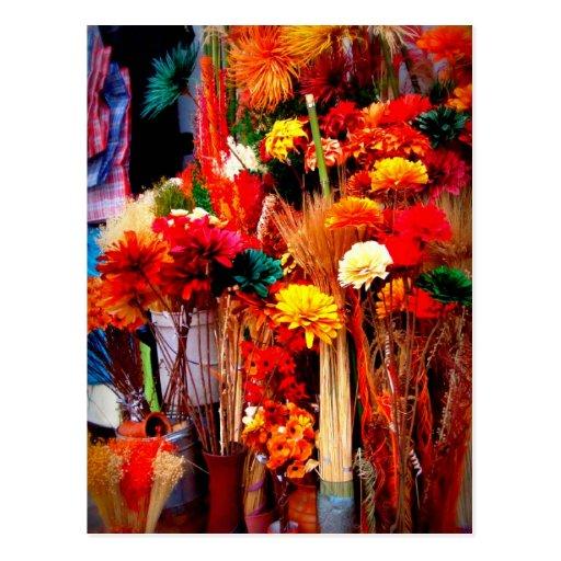 Flores secadas - fotos vivas del mercado postales