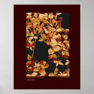 flores secadas otoño impresiones