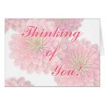 Flores Tarjeta-Rosadas del Zinnia del saludo flora