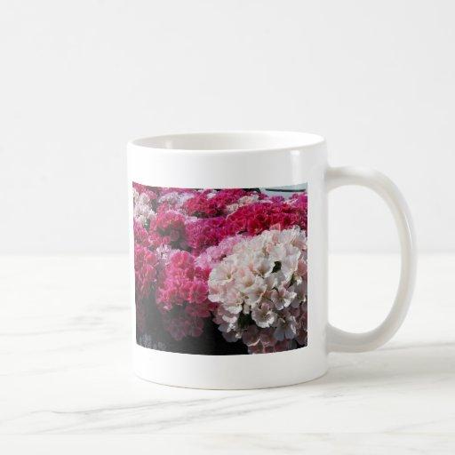 Flores Tazas De Café