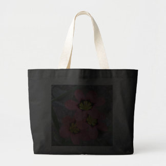 flores tricolored rosa del sparaxis bolsa