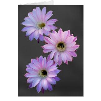 Flores triples de Nightblooming como tarjeta