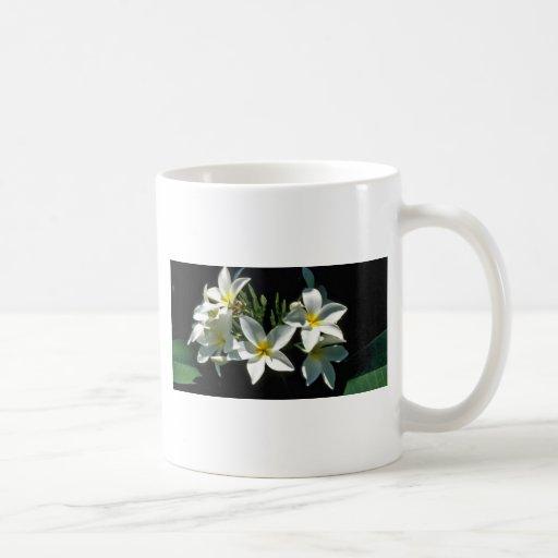 Flores tropicales blancas con las flores de centro tazas de café