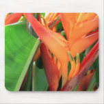 Flores tropicales brillantes de Heliconia Alfombrilla De Ratón