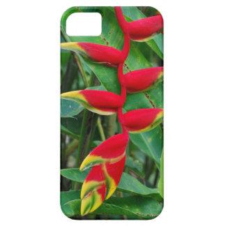 Flores tropicales de Heliconia en Hawaii Funda Para iPhone 5 Barely There