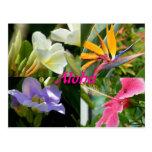 Flores tropicales de Kauai Hawaii Postales