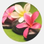 flores tropicales del plumeria en piedras pegatina
