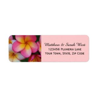 Flores tropicales del Plumeria rosado del Etiqueta De Remitente