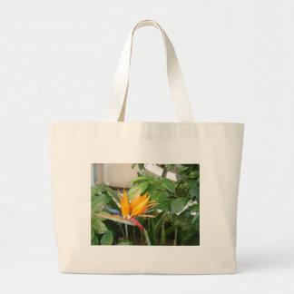 flores tropicales exóticas de la ave del paraíso bolsa