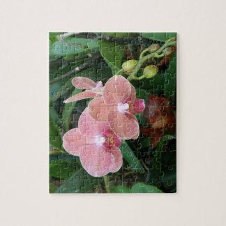 Flores Tropicales  Orquideas Jigsaw Puzzle