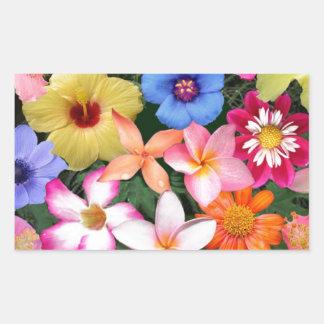Flores tropicales pegatina rectangular