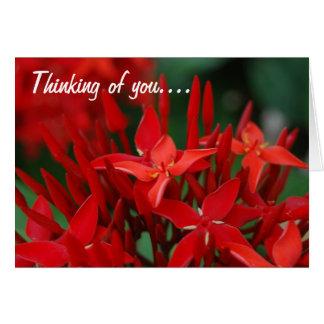 Flores tropicales rojas tarjetas