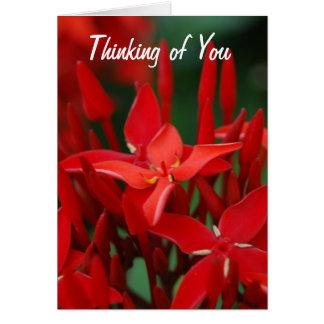 Flores tropicales rojas tarjetón