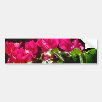 Flores tropicales rosadas, flores de Ocho Rios Pegatina Para Auto