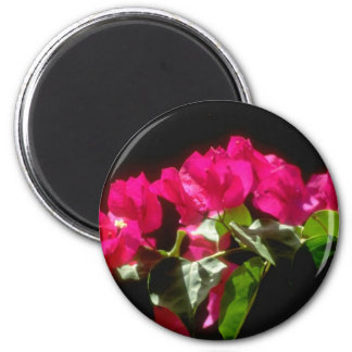 Flores tropicales rosadas, flores de Ocho Rios Imán Redondo 5 Cm