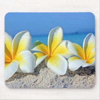 Flores tropicales tapetes de ratón