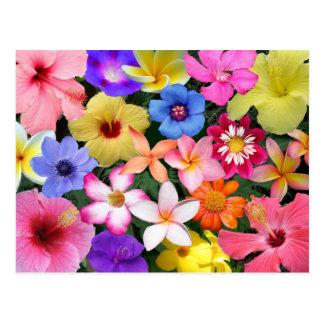 Flores tropicales tarjeta postal