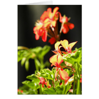 Flores ucranianas tarjeta de felicitación