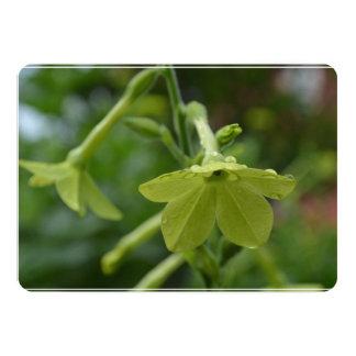 Flores verdes de la nicociana invitación 12,7 x 17,8 cm
