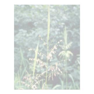 Flores verdes del arroz salvaje (zizania acuática) membretes personalizados