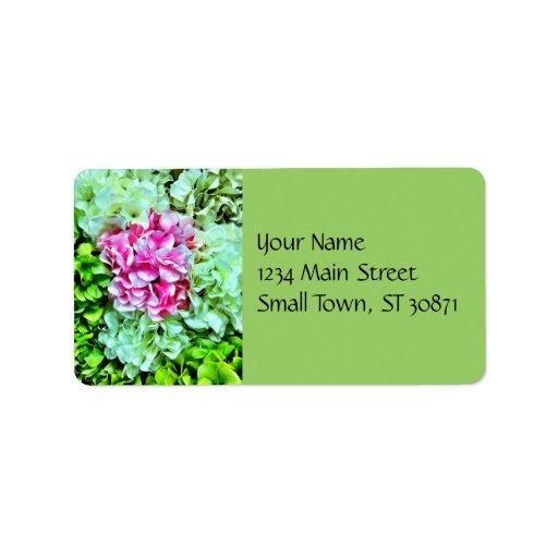 Flores verdes poner crema rosadas hermosas del Hyd Etiquetas De Dirección