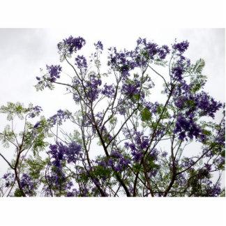 flores verdes púrpuras contra el cielo brillante f esculturas fotográficas