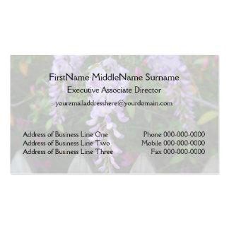 Flores y cerca púrpuras de las glicinias
