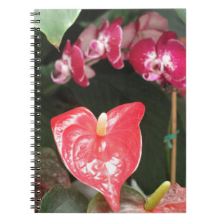 Flores y cuaderno tropicales de las orquídeas