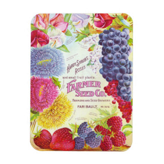 Flores y fruta del vintage iman rectangular