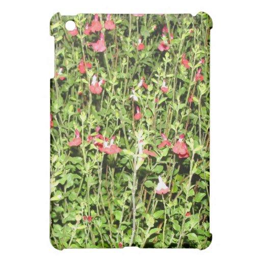flores y hojas rosadas del verde