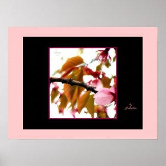 Flores y hojas rosadas y posición ligera rígida de póster