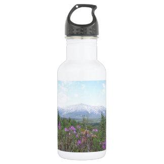Flores y la montaña