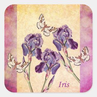 Flores y mariposa púrpuras hermosas del iris pegatina cuadrada