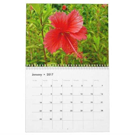 Flores y naturaleza - modificadas para requisitos calendarios de pared