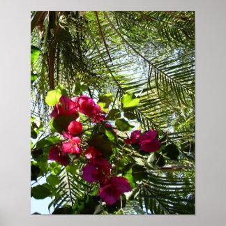 Flores y palmera posters