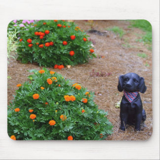 Flores y perro tapetes de ratón